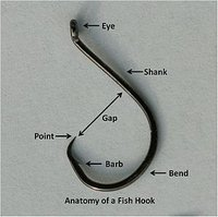 Saltwater Fishing Hooks