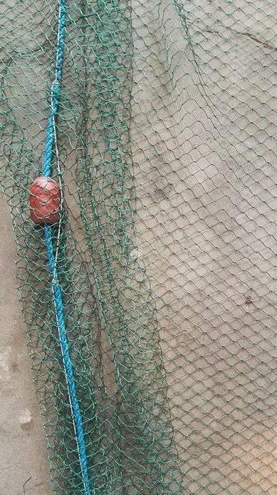 10m piper bait drag net 1 inch 6 ply mesh action outdoors for Drag net fishing