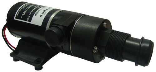 Macerator Pump 12V